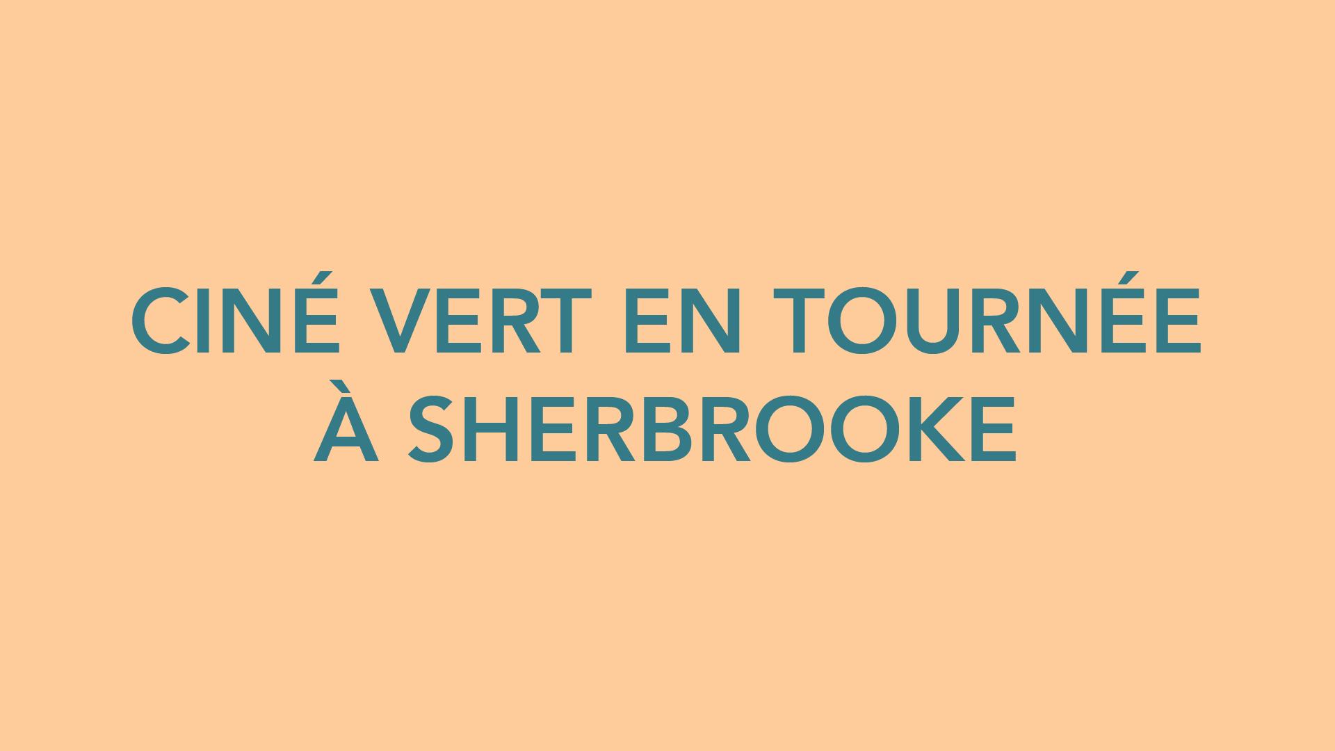 Ciné Vert au festival du Cinéma du Monde de Sherbrooke.